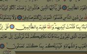 Surah Al-Jumua(62) by Nasser Al Qatami Majestic Recitation(Cuma)